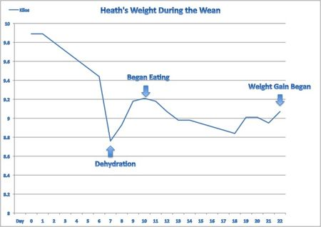 Heath'sWeight